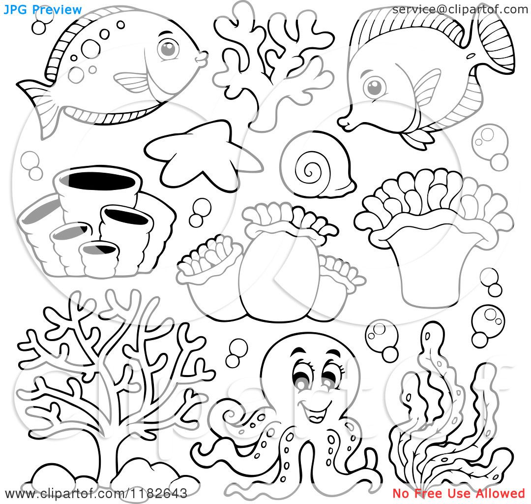 Sea Creatures And An Octopus Royalty Free Vector Clipart By Visekart Butterfly Coloring Page Cartoon Sea Animals Animal Coloring Pages