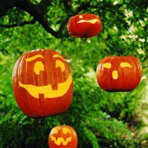 Hanging jack o lanterns