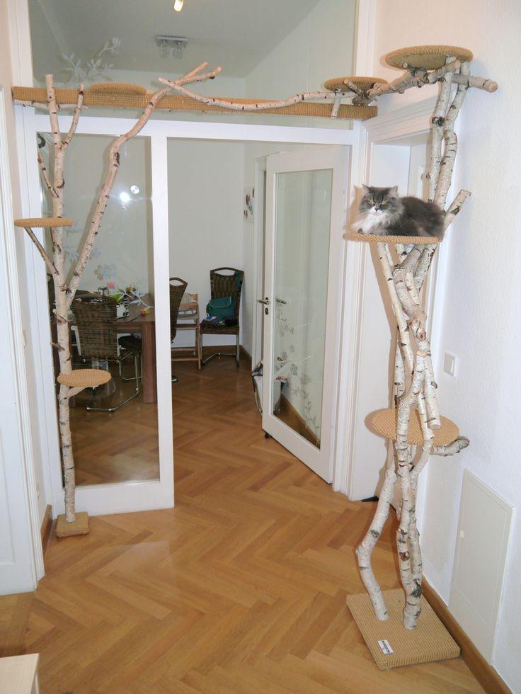 kratzbaum xxl ziigo katzenbaum gro e katzen katzenkratzbaum mehrere katzen 205 cm deckenhoch. Black Bedroom Furniture Sets. Home Design Ideas