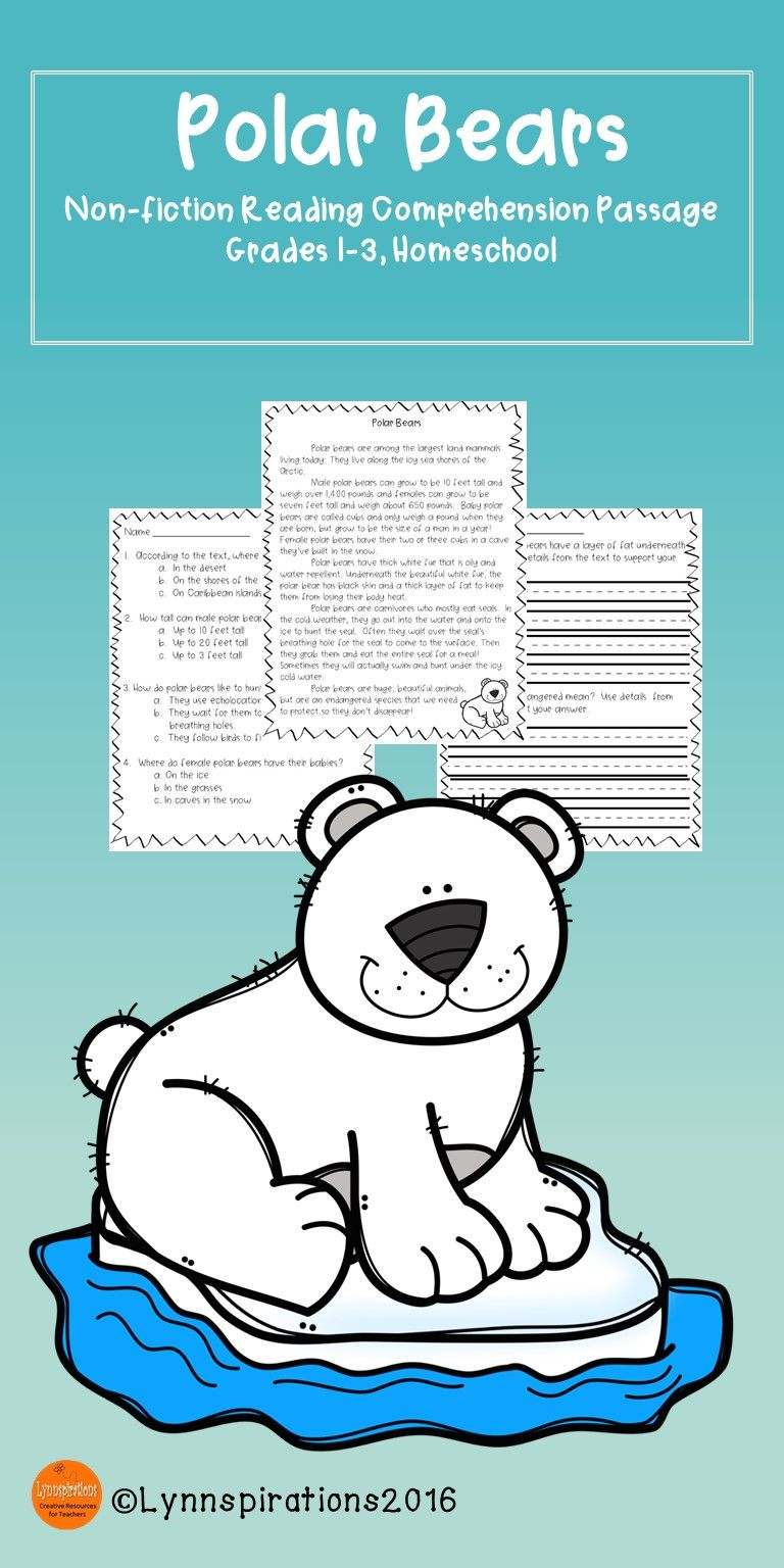 Winter Animals - Polar Bears Reading Comprehension Passage | Reading ...