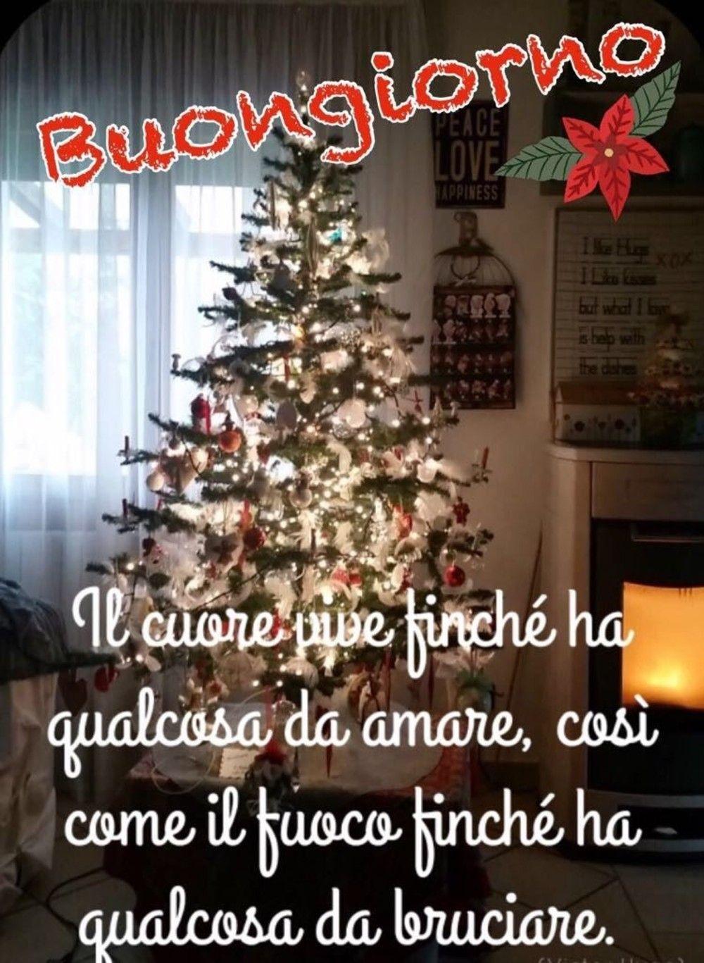 Buongiorno Con Albero Di Natale Buongiorno Sabato