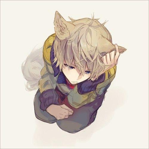 Anime Neko And Boy Imageの画像 Wolf Boy Anime Anime Neko Nekomimi