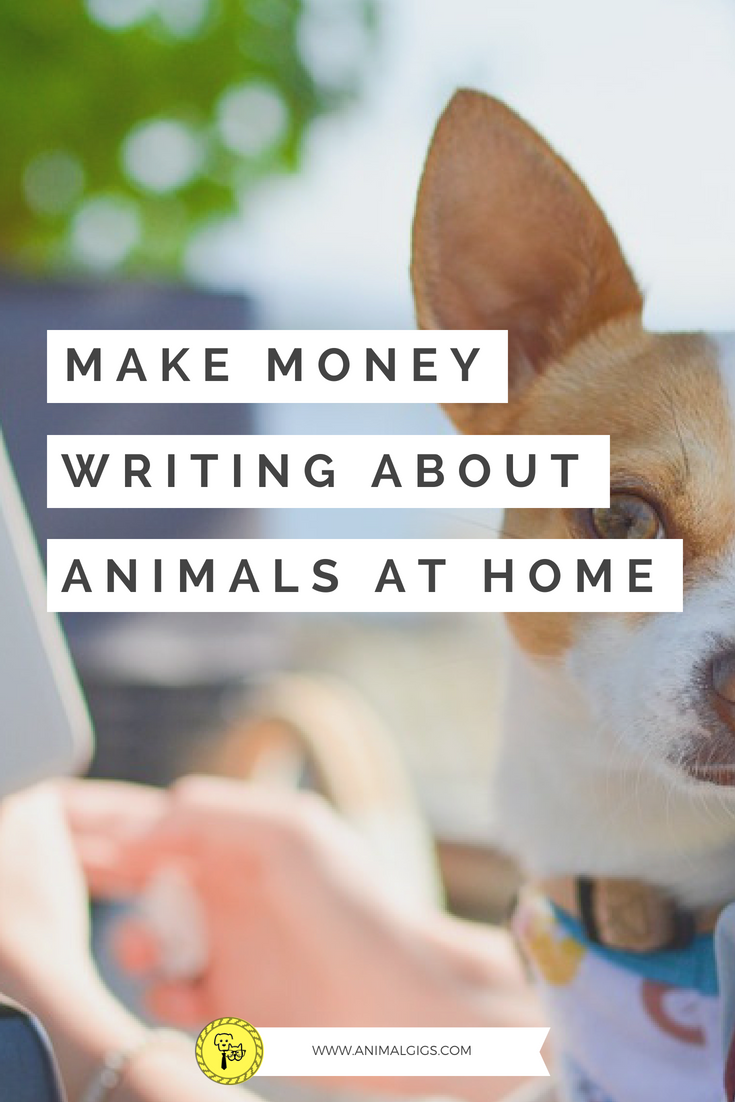 I Remember When I First Began My Search For A Work At Home Job At The Time I Was Working In The Pet Industry I With Images Pet Businesses Work With Animals