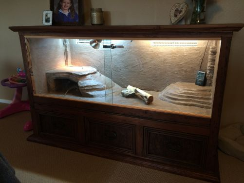 Custom Bearded Dragon Enclosure From A Dresser Bearded