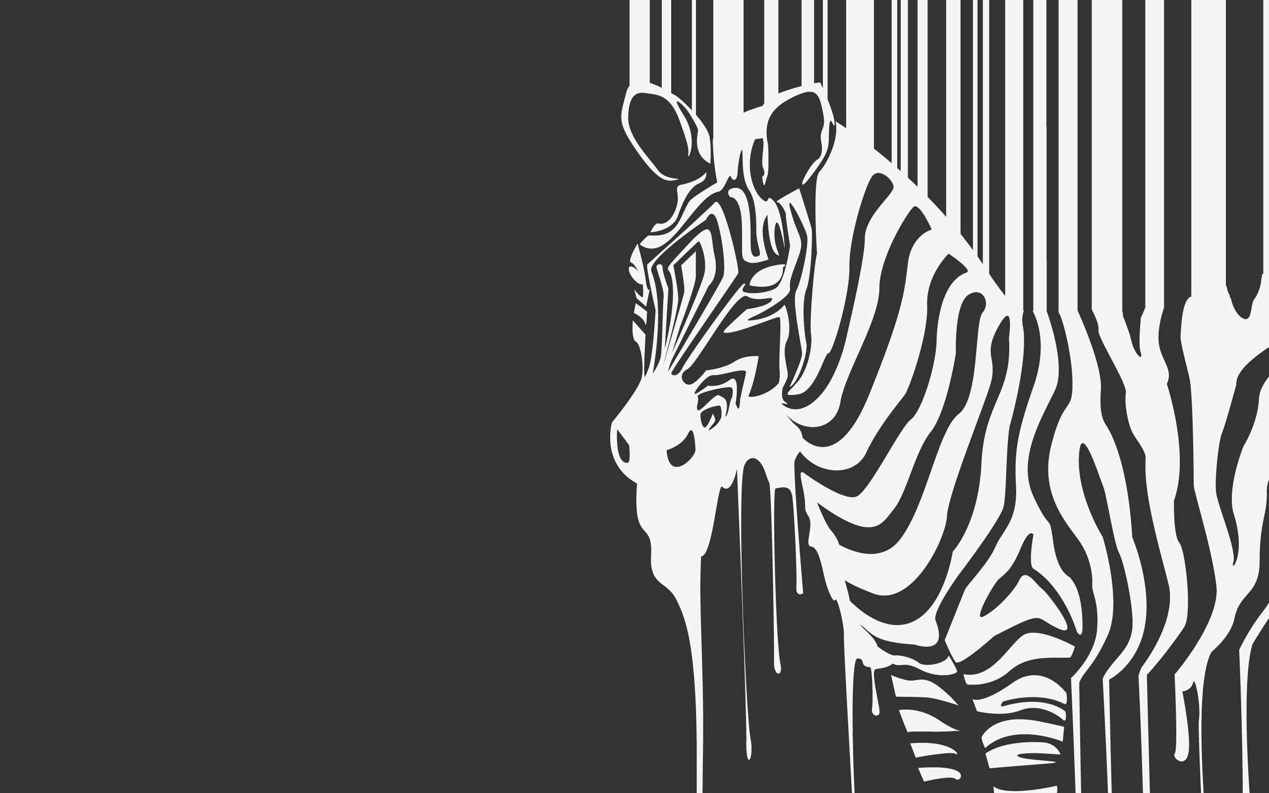 Zebra Wallpaper Zebra Art Zebra Wallpaper Black And White Cartoon