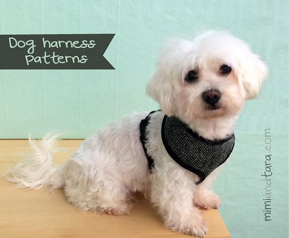 Dog Harness Pattern Size S Sewing Pattern Dog Clothes Patterns