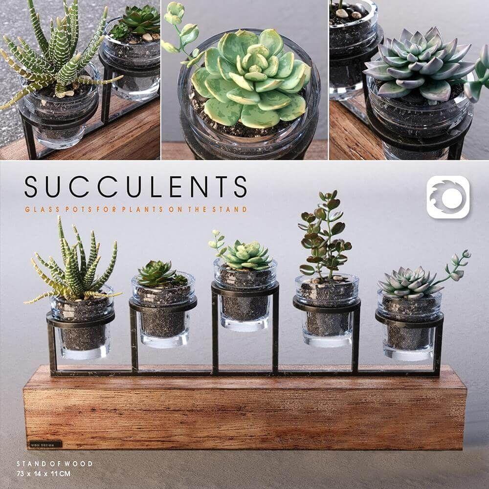 Miniature Artificial Succulents Plants Cactus Grass Fairy Garden Decor #6