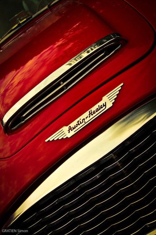 1959 Austin Healey 3000 Mark 1 Big Healeys Combustible Contraptions Austin Healey Classic Sports Cars Austin Cars