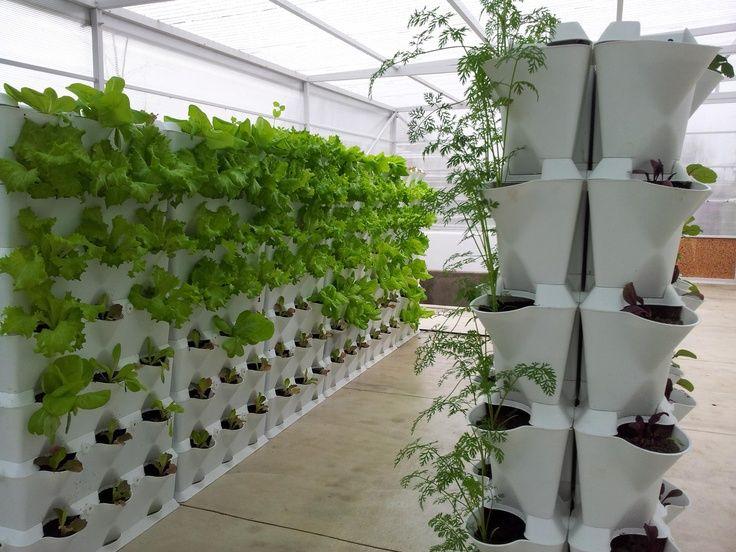 Design Invernadero Vertical Buscar Con Google Jardines
