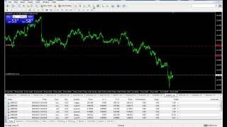 What is option fx trade