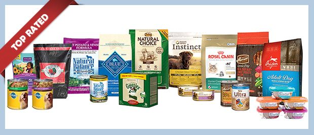 Top Rated Dog Food The Munch Zone Top Rated Dog Food Dog Food