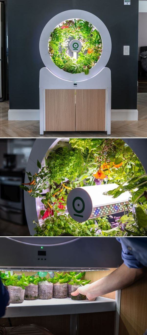 Ogarden Smart Automated Indoor Gardening System For Living 640 x 480