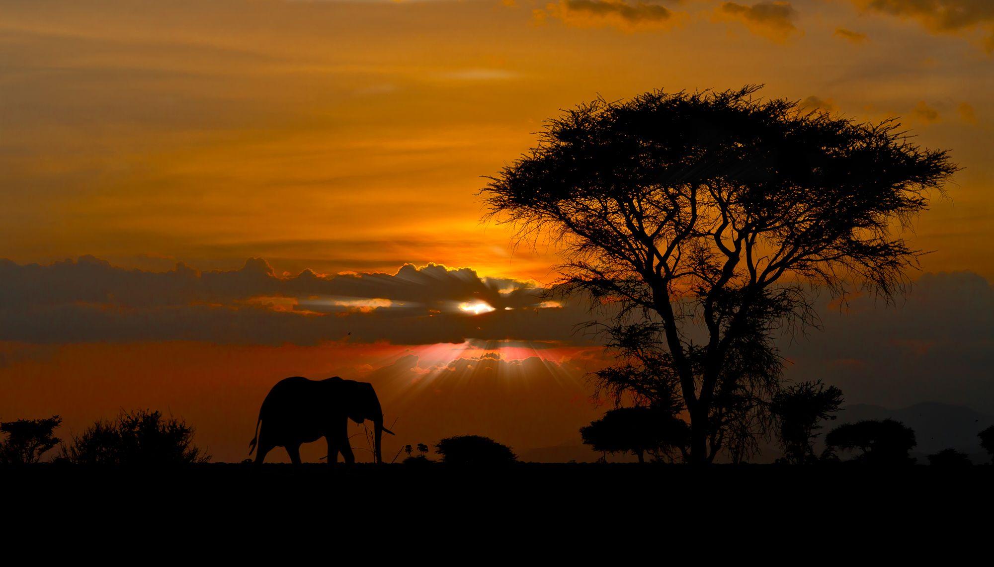 African Landscape Sunset - Nature Wallpapers (9237) ilikewalls.
