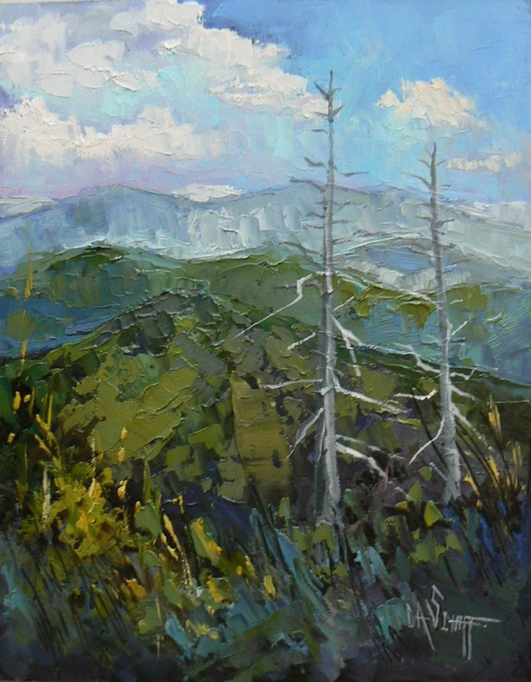 Art Sale Mountain Painting Daily Painting Bird S Eye View By