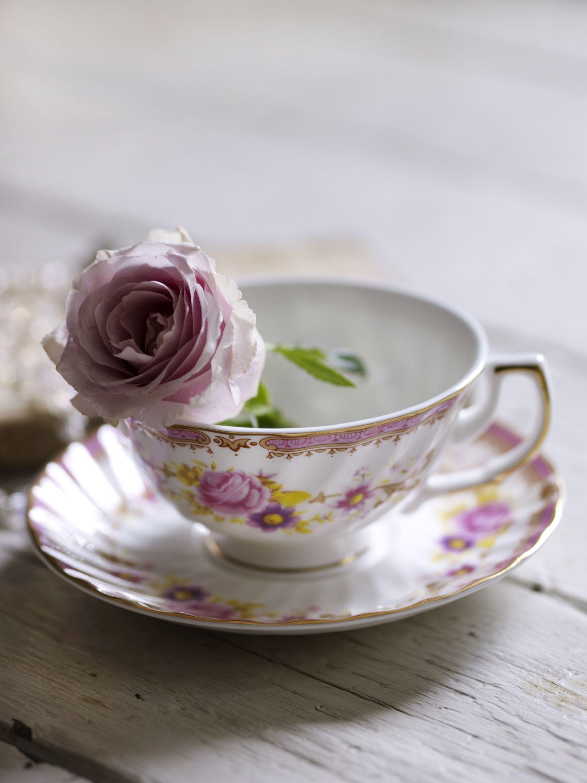 Shabby Chic Tea Set At House Of Fraser 20 00 Http Bit