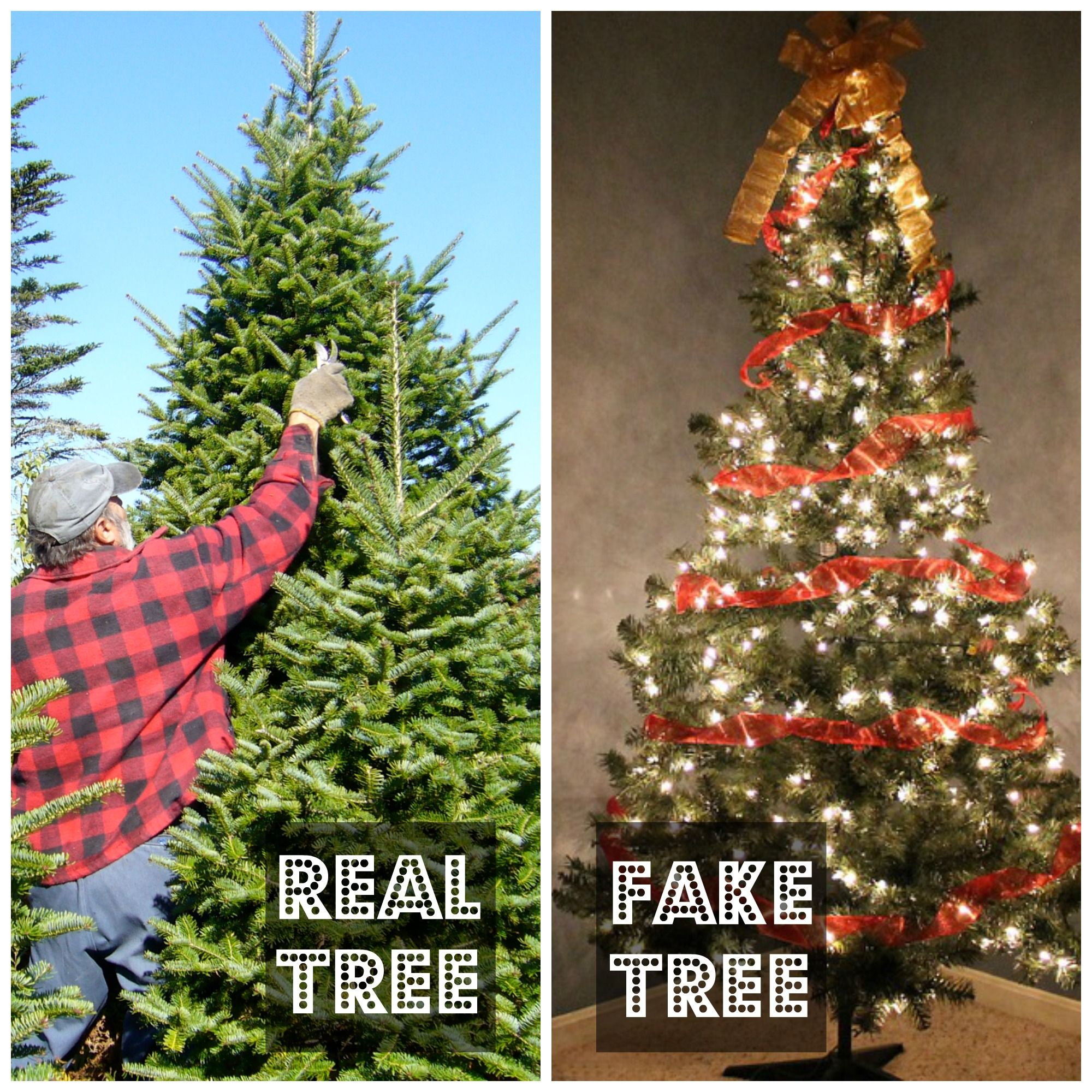 Are you team Real Tree or Fake Tree? Fake trees, New