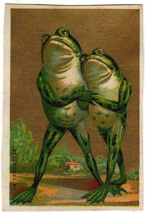 Открытка жаб