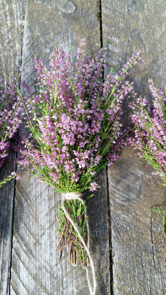 Heather Bouquet Dried Flowers Purple Lilac Pink Lavender Color Woodland Forest Rustic Home Decor Wild Herb Shabb Dried Flowers Purple Lilac Cottage Style Decor