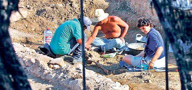 Restos prehistóricos en el término municipal de Palma