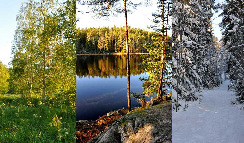 Monate auf Finnisch