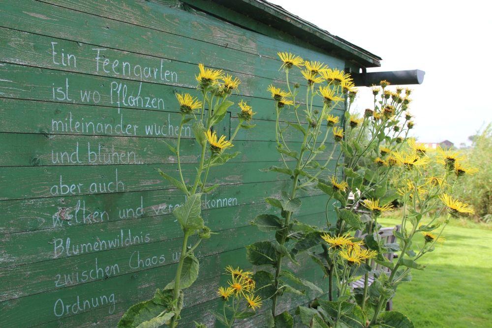 Poesie im Garten © TA.SH
