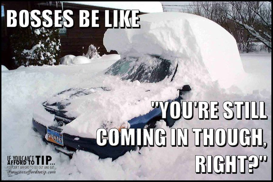 Would You Still Go To Work On A Snow Day If The Boss Said So Snow Quotes Funny Server Humor Work Humor