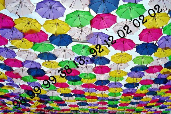 Decorative Umbrellas For Wedding Reception Parties Jaipuri Rajasthani India Umbrella Decoration Competition Umbrella De Umbrella Agueda Colorful Umbrellas