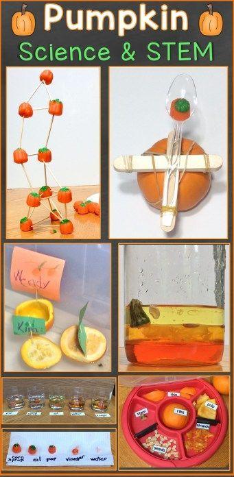 Pumpkin Science Experiments & STEM Challenges #stemactivitieselementary