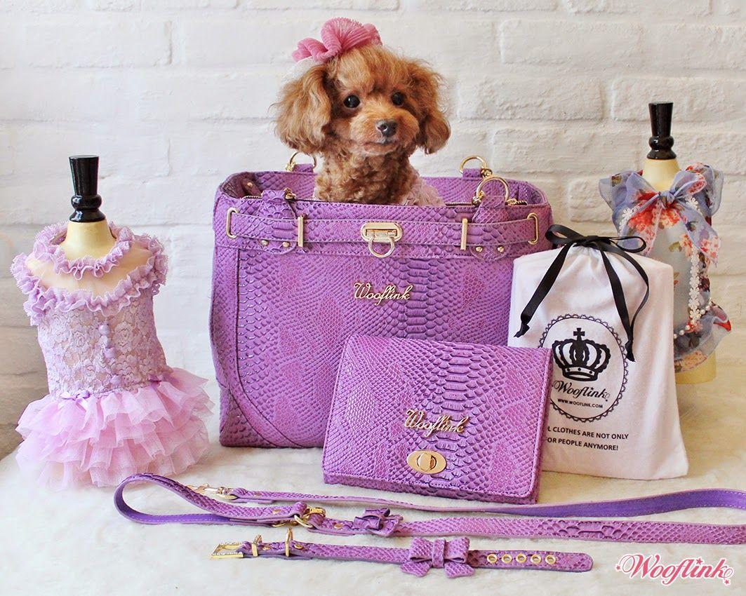 GLAM BAG ♥ PURPLE Designer dog clothes, Glam bag