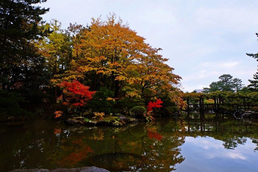 晩秋の白山公園 by Masanori Shimizu on 500px
