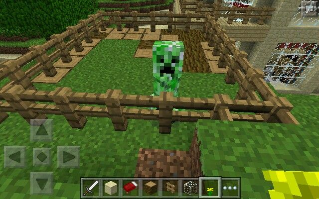 I tamed a CREEPER!!! Its my BFF!