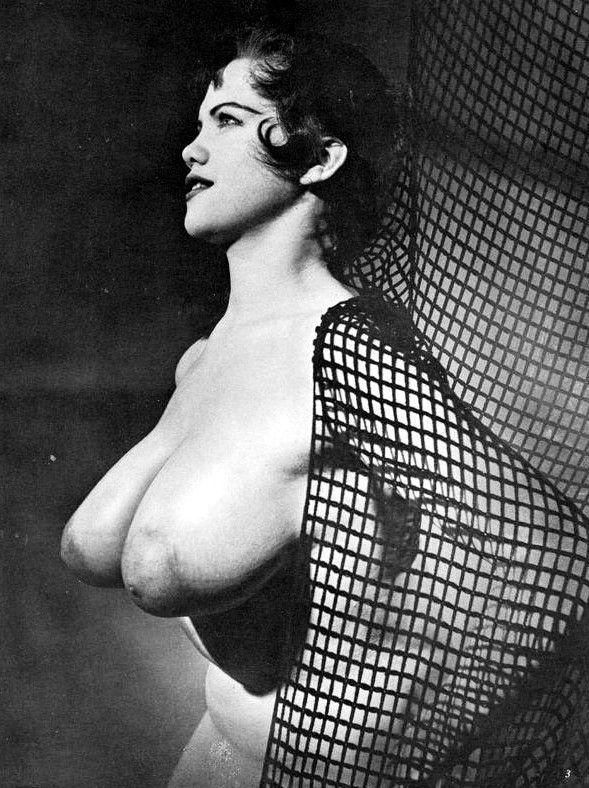 Vintage Busty Nipples