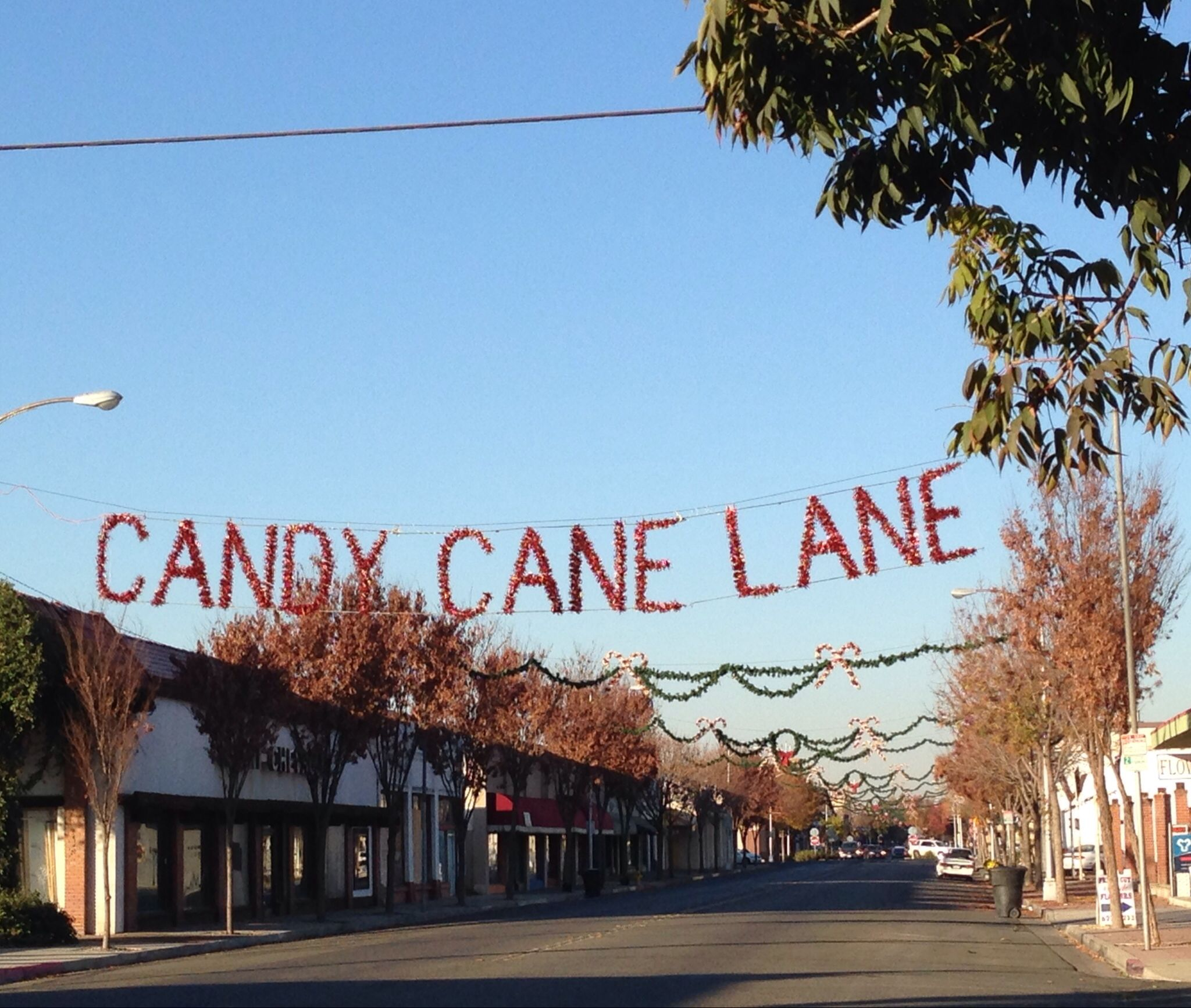 Main Street In Visalia Is Decorated Every Year For The Annual Candy Cane Lane Christmas Parade Which Takes Place Visalia California California Pictures Visalia