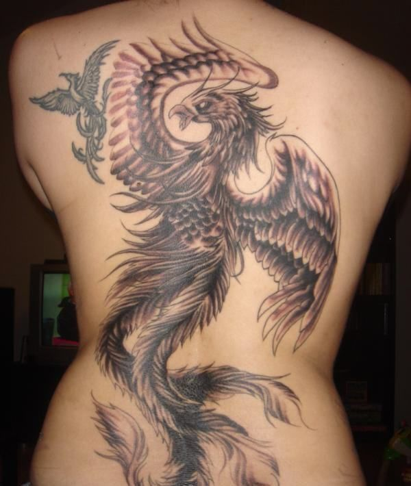 d855043a47207 Phoenix tattoo- is a bird which could recycles its own life in the legends  of different cultures. Phoenix tattoo represents rebirth, strength,  longevity.