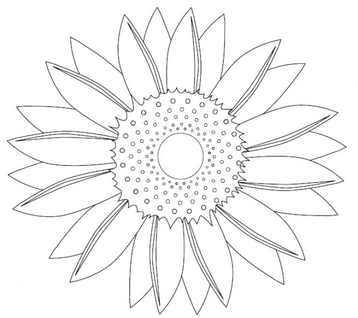 beautiful simple sunflower mandala coloring page for young kids