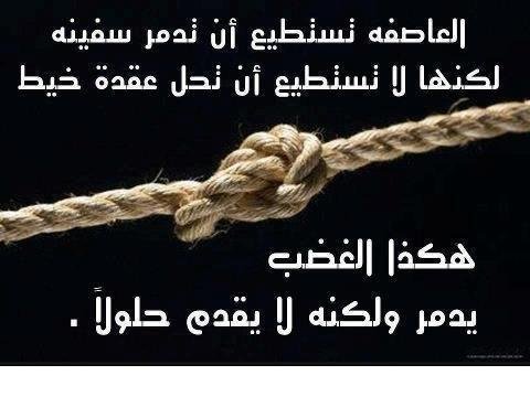 اقوال و حكم العظماء February 2013 Wise Quotes Beautiful Quotes Quotes