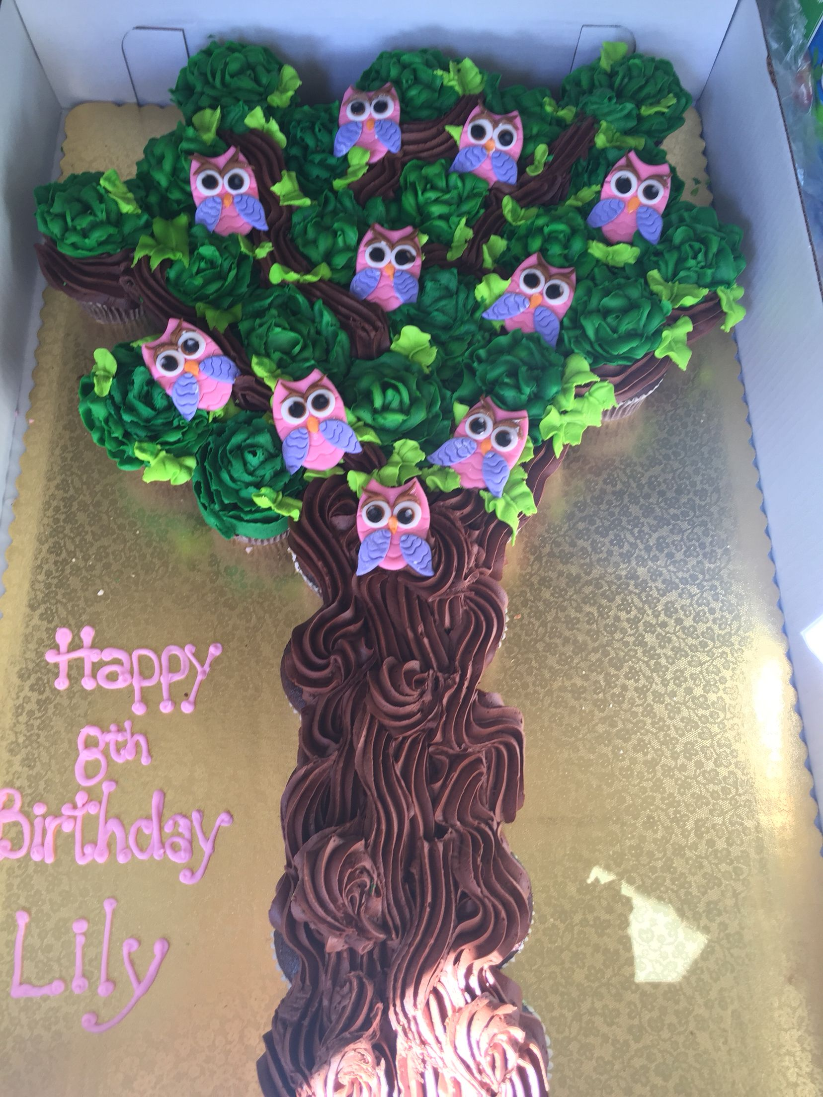Incredible Owl Cake Big Y Did The Cupcakes Fondant Owls On Etsy Fondant Personalised Birthday Cards Arneslily Jamesorg