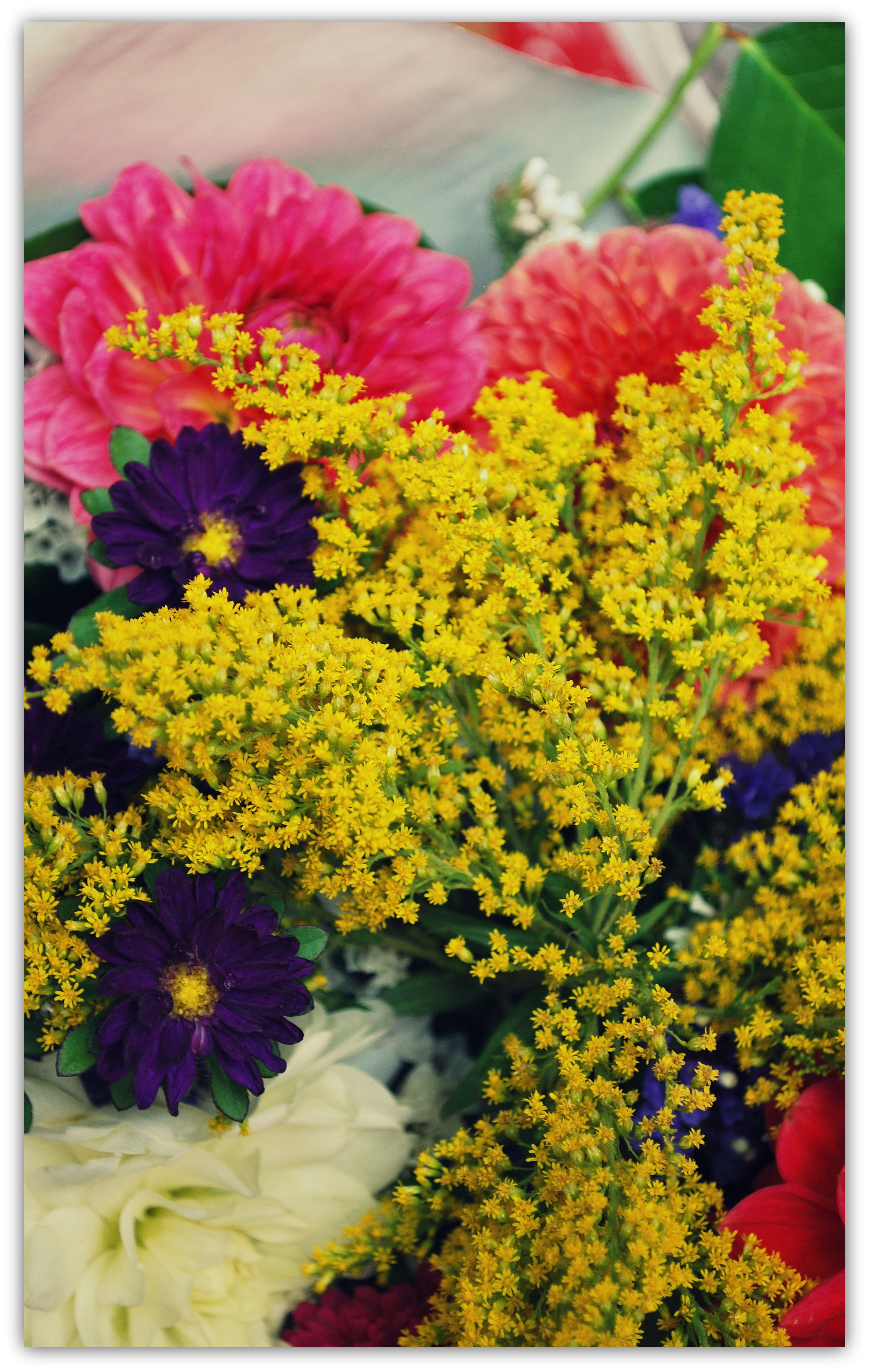 Pink yellow and purple flowers straight up pinterest pink