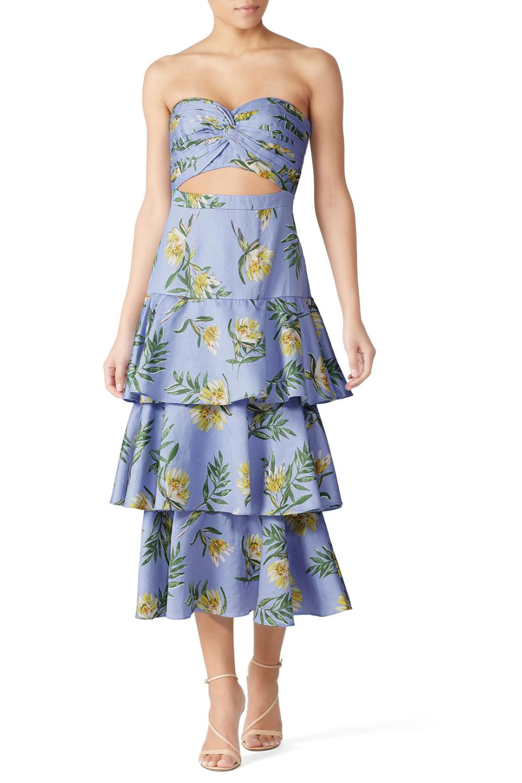 Amur Roxy Dress Roxy Dress Dresses Blue Print Dress