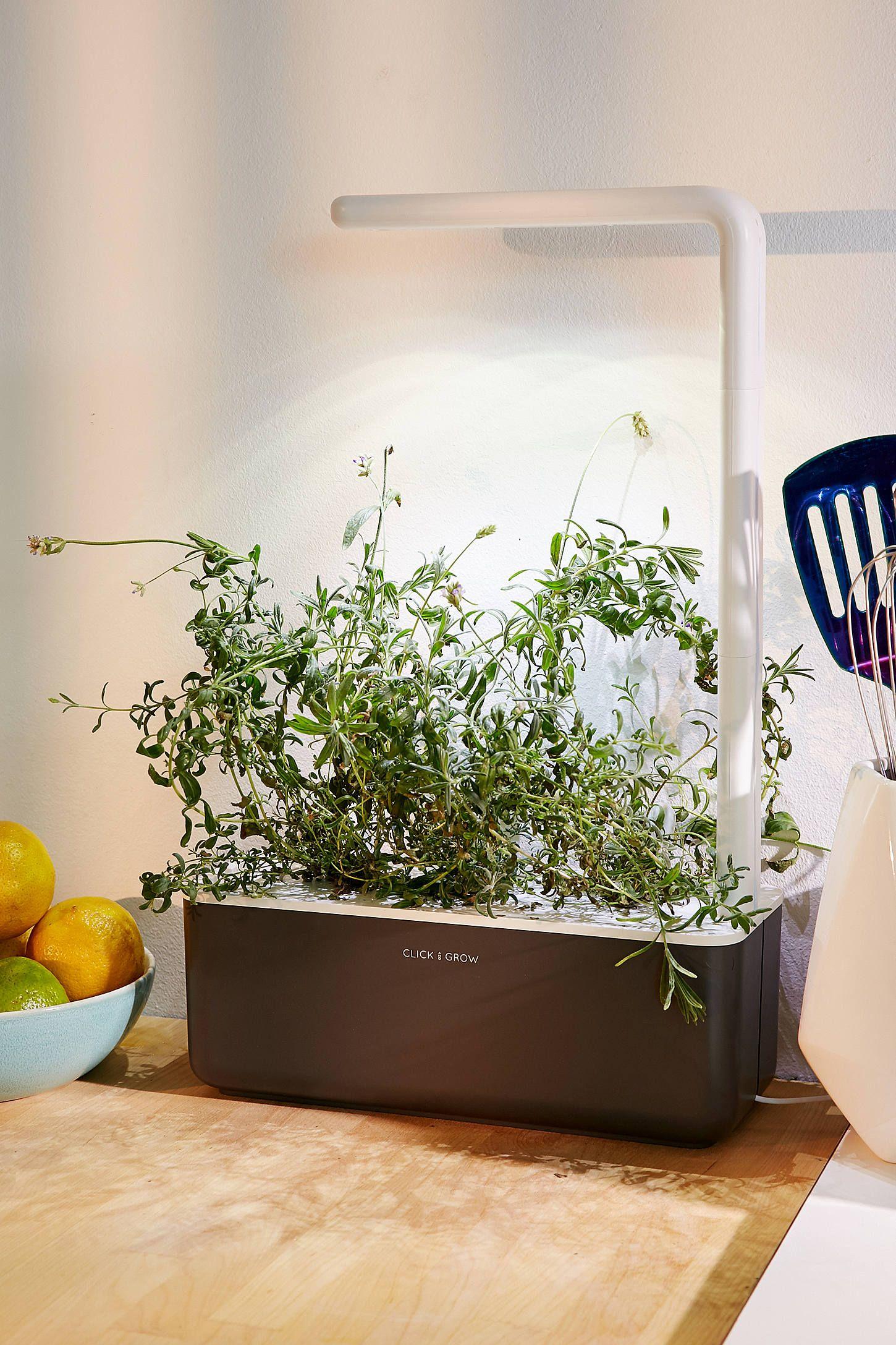 Click Grow Smart Herb Garden 3 Starter Kit Herb Garden 400 x 300
