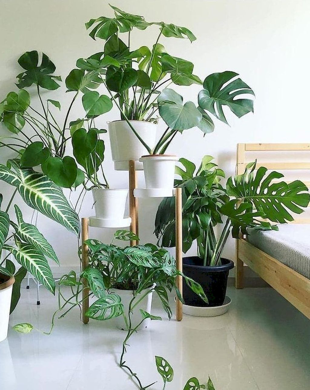 Nice Concepts for Elegant Plant Stands in 2020 | Plants ... on Amazing Plant Stand Ideas  id=40069
