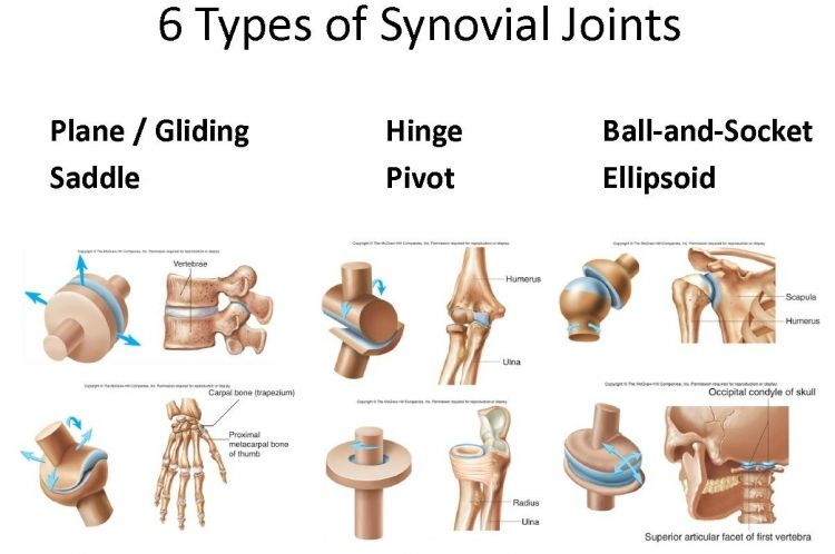 types of joints - Google Search | WOOD>Joints>Connections | Pinterest