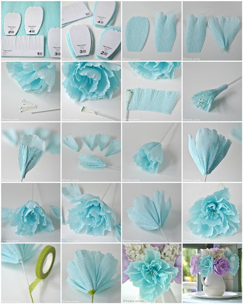 Crepe Paper Peony Flower Tutorial  make my own flowerd  paper