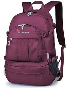 Mountaintop Casual College Backpack -Best Backpack Under 100 ...