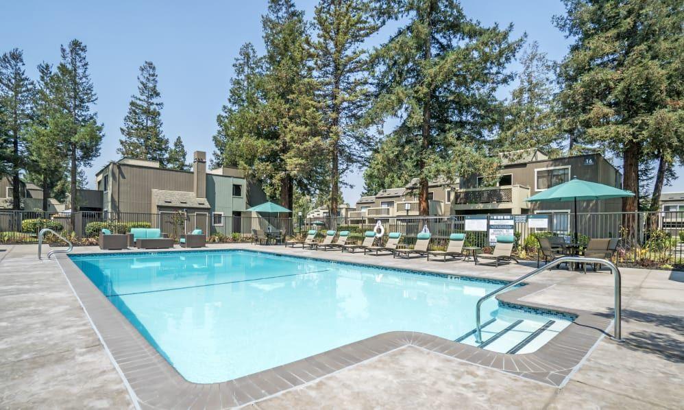 Beautiful swimming pool at Terra Apartments in San Jose