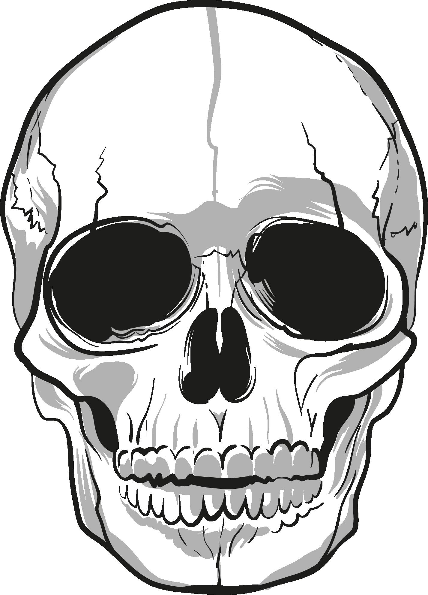 Skulls PNG Image Skull, Human skull