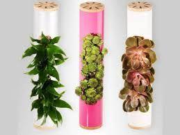 Resultado de imagen para jardines verticales pequeños