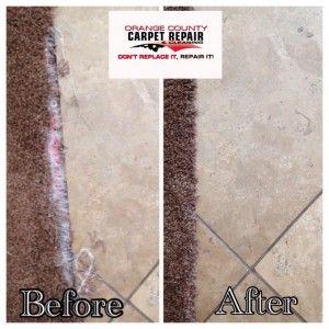 Trabuco Canyon Pet Damage Carpet Repair Repair Carpet