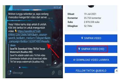cara download tiktok tanpa watermark di telegram