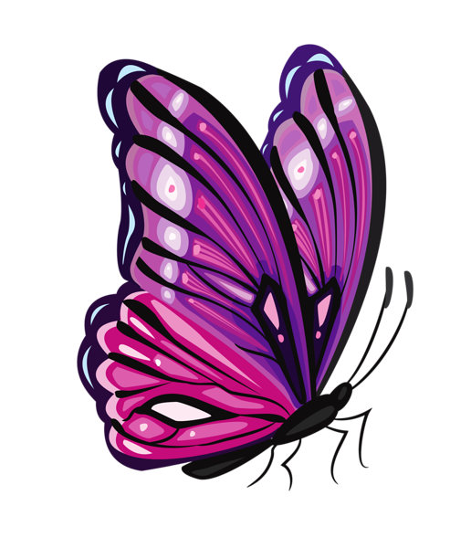 Purple Butterfly PNG Clipart Picture